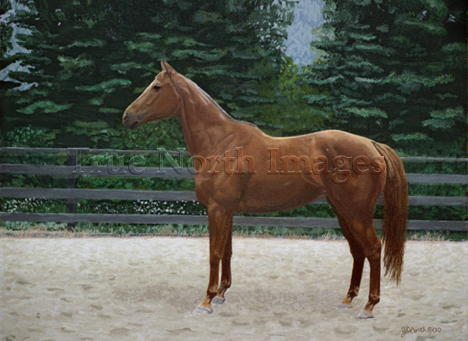 painting of chestnut Thoroughbred mare