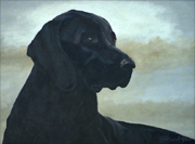 vignette head and shoulders of a black labrador retriever painted pet portrait