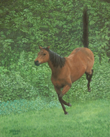 painting of bay Thoroughbred bucking for joy